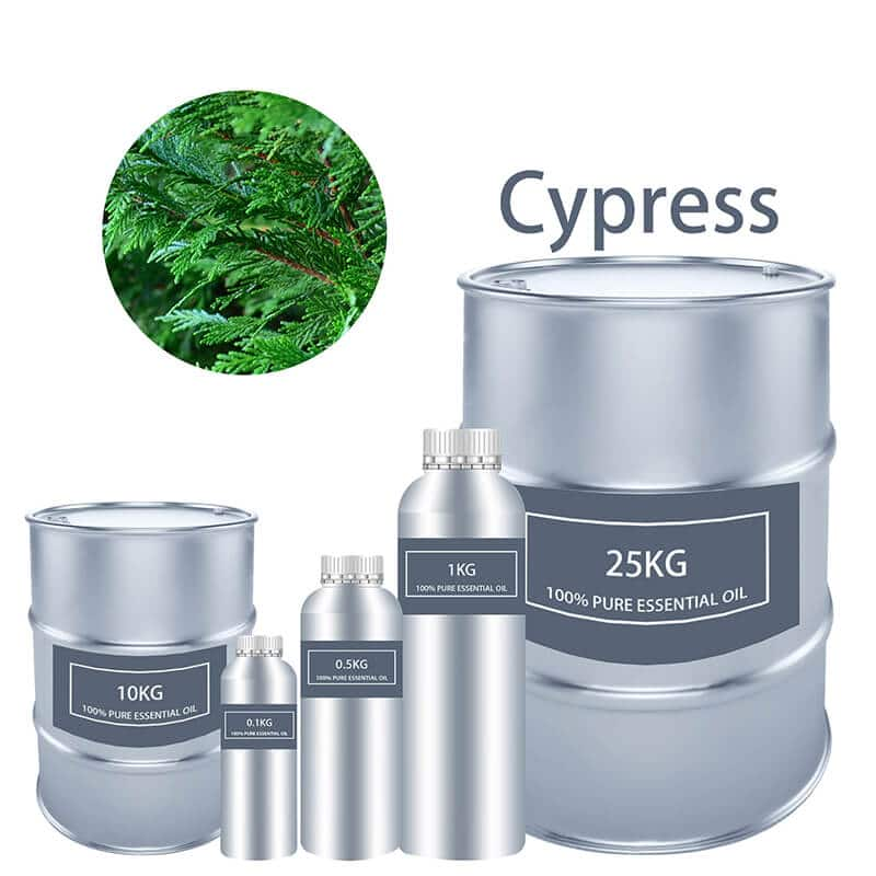 Cypress 에센셜 오일